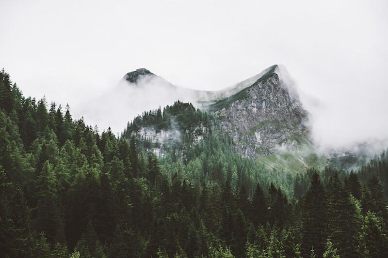 nebel_title